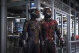 Peyton Reed telah menandatangani kontrak untuk menyutradarai 'Ant-Man 3'