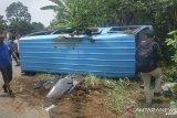 Ban pecah, mobil pengangkut atlet silat Mukomuko terguling di Jalan lintas Sumatera