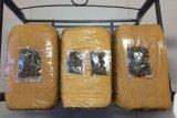 Polres Bintan mengamankan tiga kilogram ganja