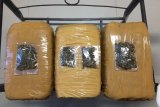Satresnarkoba Polres Bintan amankan tiga kilogram ganja
