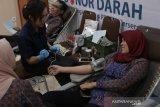 PLN UIW NTB sambut Hari Listrik Nasional dengan sumbang darah