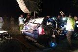 Tiga penumpang tewas akibat mobil tertimpa pohon tumbang