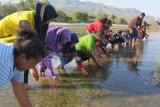 Bantuan kapal untuk nelayan di Lamakera