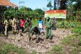 Satgas TMMD Merauke ajak warga Kampung Kogir manfaatkan lahan kosong