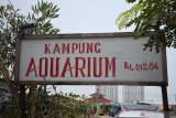 Kampung Akuarium pemukiman di bekas laboratorium Teluk Jakarta