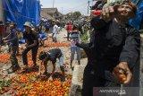 Warga saling melempar buah tomat pada tradisi Rempug Tarung Perang Tomat di Kampung Cikareumbi, Lembang, Kabupaten Bandung Barat, Jawa Barat, Minggu (13/10/2019). Tradisi tersebut merupakan ungkapan dalam membuang hal buruk dan ungkapan menjauhkan penderitaan masyarakat khususnya Petani Tomat atas hasil panen serta rendahnya harga pasar dengan ritual saling lempar menggunakan tomat busuk. ANTARA FOTO/Novrian Arbi/agr