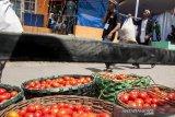 Warga membawa tomat busuk untuk mengikuti tradisi Rempug Tarung Perang Tomat di Kampung Cikareumbi, Lembang, Kabupaten Bandung Barat, Jawa Barat, Minggu (13/10/2019). Tradisi tersebut merupakan ungkapan dalam membuang hal buruk dan ungkapan menjauhkan penderitaan masyarakat khususnya Petani Tomat atas hasil panen serta rendahnya harga pasar dengan ritual saling lempar menggunakan tomat busuk. ANTARA FOTO/Novrian Arbi/agr