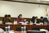 Selesaikan kasus Papua, Komite I DPD RI usul pembentukan pansus