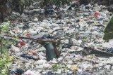 LIPI: Pembakaran plastik tidak sempurna dapat bahayakan lingkungan