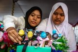Legislator DPR ingin generasi milenial aktif bangun desa