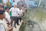 KKP gandeng FAO kerja sama  pengembangan pakan ikan
