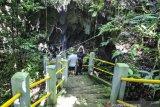 Layanan Palapa Ring tingkatkan promosi wisata digital Kabupaten Biak Numfor