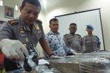 Satu dari tiga tersangka pemilik 66,6 kilogram ganja di Padang Pariaman masih diburu