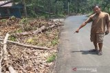 Kabel listrik berseliweran di tanah bahayakan warga desa di Bartim