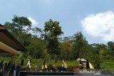 Pemkab Kulon Progo minta pelaku wisata tingkatkan kualitas pengelolaan dan promosi