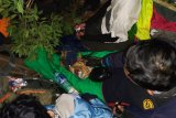 Tim SAR selamatkan empat mahasiswa Itera yang tersesat di Gunung Seminung Lampung