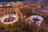Investor mengembangkan Wisata Pesisir Trenggalek sistem