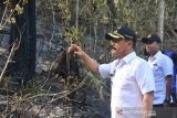 Wakil Bupati Gowa  tinjau area terdampak karhutla di Tompobulu