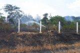 Lahan di sepanjang pintu Tol Gunung Sugih terbakar