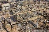 Suasana yang habis terbakar pasca kebakaran di Pasar Jatisari, Karawang, Jawa Barat, Jumat (25/10/2019). Pemerintah Kabupaten Karawang berencana merelokasi para pedagang sebagai solusi jangka pendek dan akan membagunan ulang pasar tersebut guna mengembalikan perekonomian masyarakat. ANTARA JABAR/M Ibnu Chazar/agr
