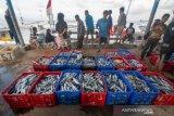Pemerintah Provinsi  Sulteng upayakan ekspor ikan ke Tiongkok