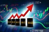 Harga minyak naik tipis setelah tambahan stok AS lebih rendah dari perkiraan