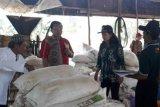 DPRD Gumas belajar tata kelola peternakan di Kalsel