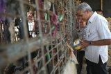 511 kasus pasung ditemukan di  Jateng