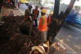 LIPI: Pekerja sektor informal masih kesulitan mengakses jaminan sosial