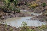 Warga Kota Maumere kesulitan air bersih