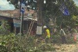 KTB di Yogyakarta diminta meningkatkan kewaspadaan jelang pancaroba