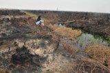 Kabupaten OKI kembangkan  sistem pemeringkatan bahaya kebakaran
