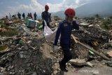 Petugas Damkar evakuasi jenazah likuefaksi Balaroa