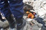 Petugas berupaya evakuasi jenazah korban likuefaksi Balaroa
