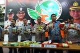 Jaringan narkoba Malaysia-Pekanbaru-Jakarta dibongkar