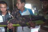 Polisi Ngawi tangkap ayah aniaya anak kandung hingga tewas