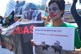 Aktivis antisirkus hewan minta stop eksploitasi gajah pada festival Way Kambas