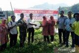 Dinas Paperi Sijunjung Lakukan Pembinaan Peningkatan Kelembagaan Pokmaswas Nagari Kumanis