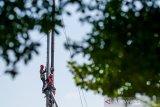 Pekerja menyelesaikan pembangunan konstruksi sutet di Arcamanik, Bandung, Jawa Barat, Jumat (8/11/2019). Kementerian PUPR menargetkan sertifikasi 212.000 tenaga kerja konstruksi hingga akhir tahun sebagai upaya pemerintah dalam memenuhi kebutuhan pekerja yang memiliki kompetensi guna menunjang pengerjaan proyek infrastrukstur saat ini dan masa mendatang. ANTARA JABAR/Raisan Al Farisi/agr