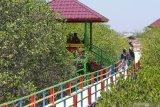 Pengunjung menikmati Ekowisata Mangrove di Desa Lembung, Pamekasan, Jawa Timur, Sabtu (9/11/2019). Warga di daerah itu memanfaatkan destinasi wisata tersebut untuk mengisi libur Maulid. Antara Jatim/Saiful Bahri/zk.