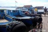 Pelabuhan penyebarangan Penajam  berpotensi untuk  PAD