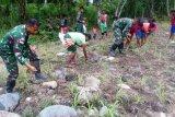TNI ajak warga perbatasan manfaatkan lahan kosong untuk cocok tanam