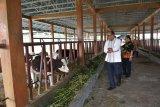 Ketua DPRD Sumbar minta pemprov jalin sinergi dengan BPTU HPT buat program pemberdayaan masyarakat