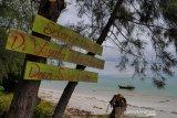 Investor minati potensi wisata Pulau Rupat Riau, ini sebabnya