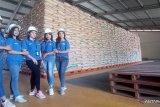 Stok beras untuk NTT masih aman