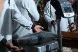 Petugas menimbang berat bandeng kawak saat penimbangan bandeng kawak di Dinas Kelautan dan Perikanan Sidoarjo, Jawa Timur, Selasa (12/11/2019). Kegiatan timbang dan lelang bandeng yang digelar setiap tahun tersebut bertujuan untuk untuk memotivasi pembudidaya bandeng kawak yang merupakan potensi budidaya perikanan di Kabupaten Sidoarjo. Antara Jatim/Umarul Faruq/zk