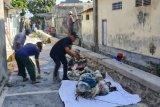 Dinsos Mataram siagakan personel tagana mengantisipasi bencana