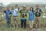 Dirjen Hortikultura Kementerian Pertanian Prihasto Setyanto (tengah) didampingi Managing Director PT East West Seed Indonesia (Ewindo) Glenn Pardede (kedua kiri) berfoto bersama Direktur Riset dan Pengembangan PT Ewindo Asep Harpenas (kiri), Deputy Director of Human Resources PT Ewindo Fransiska Fortuna (kedua Kanan), Director Sales dan Marketing Afrizal Gindow (kanan) di sela acara edukasi budidaya bawang merah menggunakan biji di Purwakarta, Jawa Barat, Kamis (14/11/2019). Kementerian Pertanian mendorong petani untuk mengembangkan budidaya bawang merah menggunakan biji karena hemat biaya, yaitu Rp 10 juta/ha dibanding menggunakan umbi sebesar Rp 45 juta/ha, produksinya lebih besar dan mengurangi impor bibit/umbi.. ANTARA FOTO/M Ibnu Chazar/agr