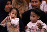 Bayi kembar siam asal Kendari, Sulawesi Tenggara Azila  (kiri) digendong ibunya Silvina Dewi dan Aqila (kanan) digendong bapaknya Jayasri di Rumah Sakit Umum Daerah (RSUD) Dr Soetomo, Surabaya, Jawa Timur, Jumat (15/11/2019). Bayi kembar siam yang telah berhasil dipisahkan dengan operasi pada Rabu (14/8/2019) itu hari ini pulang ke Kendari setelah Tim penanganan kembar siam RSUD Dr Soetomo menyatakan kondisi kesehatan dan fisiknya semakin membaik pascaoperasi pemisahan. Antara Jatim/Didik S/ZK