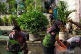 Kali Temi bisa jadi objek wisata air di Lumajang
